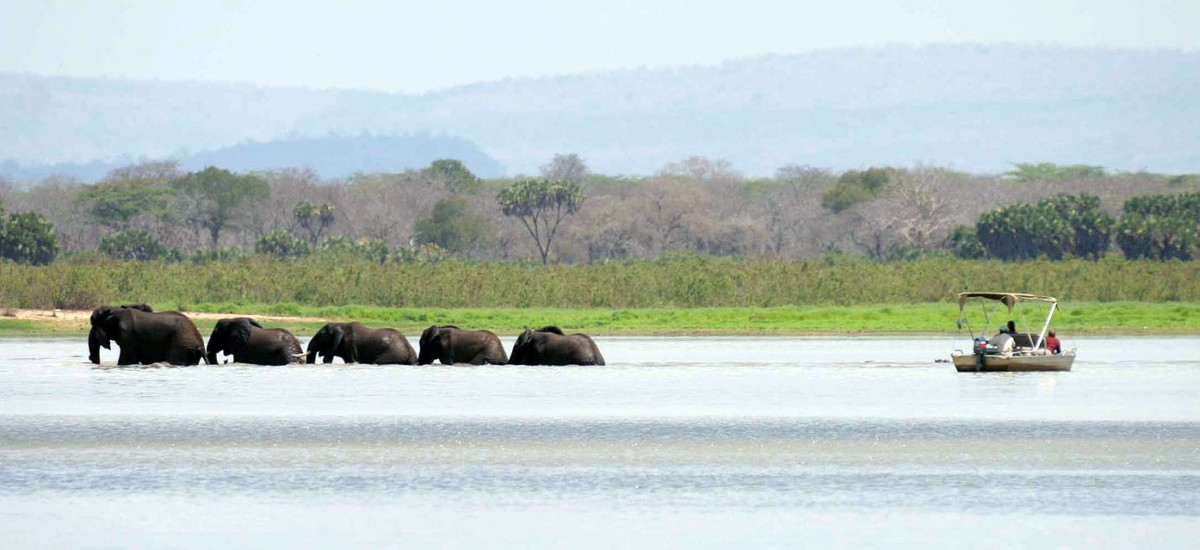 Selous Safari Co. Boat Tour