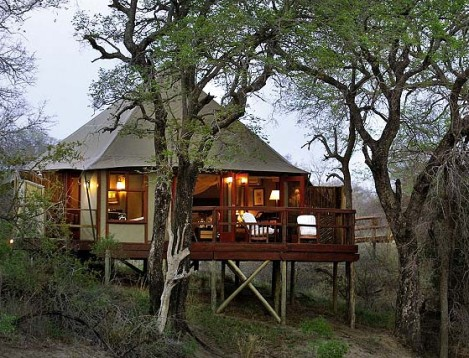 SA-KNP-Hamiltons Tented Camp-tent ext